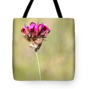 Wild Carnation With Nocturnal Moth Tote Bag