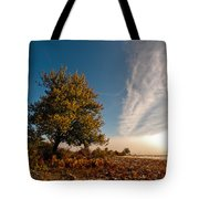Wild Cherry Tote Bag by Davorin Mance