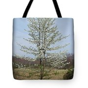 Wild Cherry Tree In Spring Bloom Tote Bag