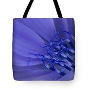 Wild Chicory Macro Tote Bag