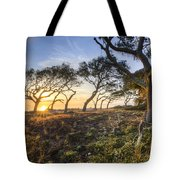 Wild Coast Tote Bag