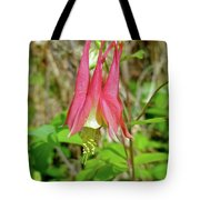 Wild Columbine - Aquilegia Canadensis Tote Bag