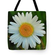 Wild Daisy With Dew Tote Bag