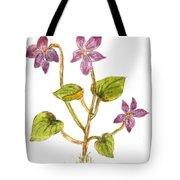 Wild Dog Violet Tote Bag