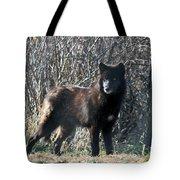 Wild Eyes  Tote Bag