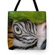 Wild Eyes - Parrot Tote Bag