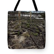 Wild Fire Aftermath Tote Bag