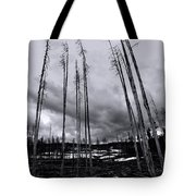 Wild Fire Aftermath In Black And White Tote Bag
