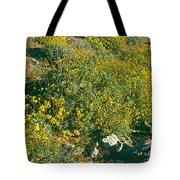 Wild Flowers, Anza Borrego Desert State Tote Bag