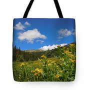 Wild Flowers In Rocky Mountain National Park Tote Bag