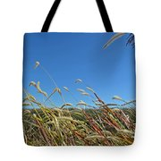 Wild Foxtail Grass In The Breeze II Tote Bag