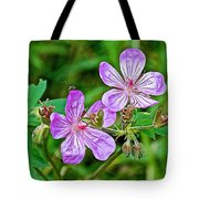 Wild Geranium On Trail To Swan Lake In Grand Teton National Park-wyoming Tote Bag