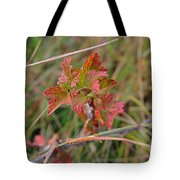 Wild Gooseberry Leaves Tote Bag