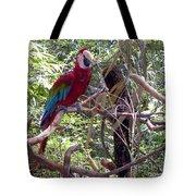 Wild Hawaiian Parrot  Tote Bag
