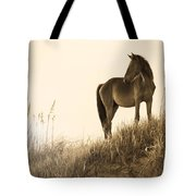 Wild Horse On The Beach Tote Bag