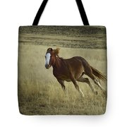 Wild Horse Running-signed-#7273 Tote Bag