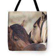 Wild Horse Secrets Tote Bag