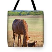 Wild Horses Mother And Baby Tote Bag