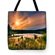 Wild Maine Woods In Baxter State Park Tote Bag