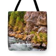 Wild Mountain River Tote Bag