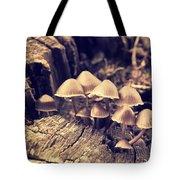 Wild Mushrooms Tote Bag by Amanda Elwell