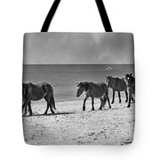 Wild Mustangs Of Shackleford Tote Bag