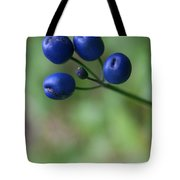Wild New Hampshire Bluebead Lily Tote Bag