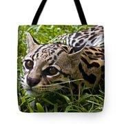 Wild Ocelot Tote Bag