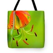 Wild Orange Lilies Tote Bag