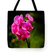 Wild Pea Flower Tote Bag by Robert Bales