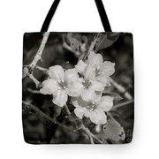 Wild Petunias In Black And White Tote Bag