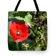 Wild Poppy Tote Bag