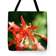 Wild Red Tote Bag