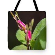 Wild Rose Buds Tote Bag