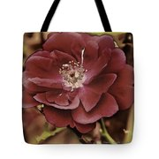 Wild Rose Iv Tote Bag