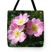 Wild Roses 1 Tote Bag