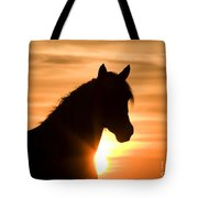 Wild Stallion At Sunrise Tote Bag