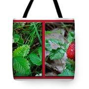 Wild Strawberry Plant - Fragaria Virginiana Tote Bag
