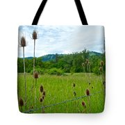 Wild Teasel In Nez Perce National Historical Park-id- Tote Bag