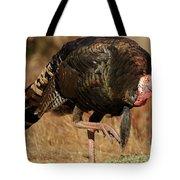 Wild Turkey Tote Bag by Adam Jewell