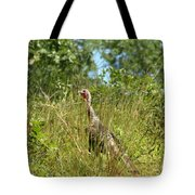 Wild Turkey In The Sun Tote Bag