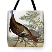 Wild Turkey Tote Bag by Titian Ramsey Peale