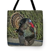 Wild Turkey Tom Tote Bag