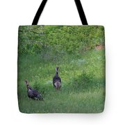 Wild Turkeys In Grass  In Kansas Tote Bag by Robert D  Brozek