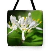 White Honeysuckle Flowers Tote Bag