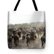 Wildebeest Migration  Tote Bag