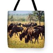 Wildebeests Herd. Gnu On African Savanna Tote Bag