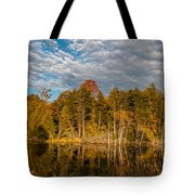 Wilderness Pond 2 Tote Bag