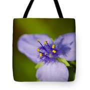 Wildflower 1 - Botanical Photography By Sharon Cummings Tote Bag