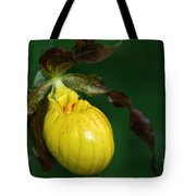 Wildflower Lady Slipper Tote Bag